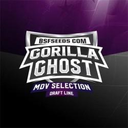 Gorilla Ghost X12 Fem Bigger Stronger Faster