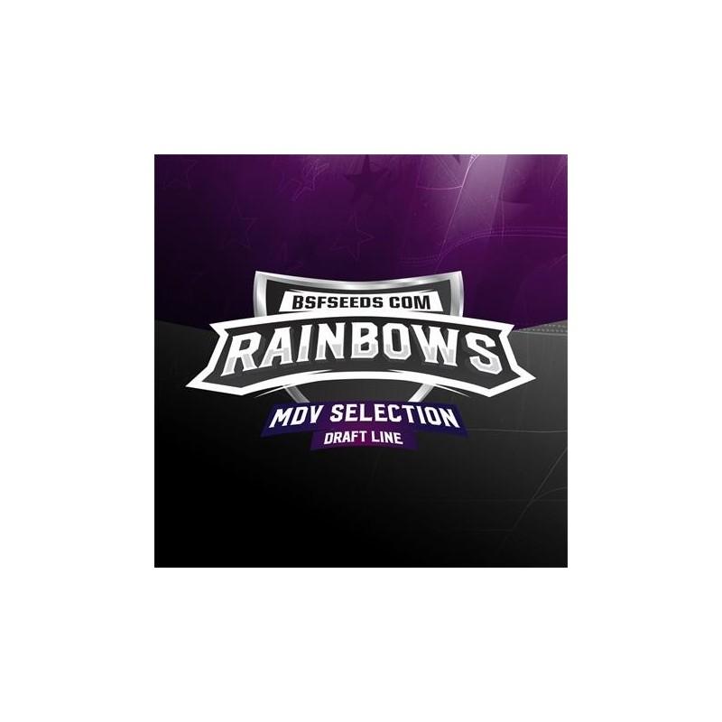 Rainbows x3 Fem Bigger Stronger Faster Seeds.