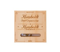 Sour Diesel Auto x3 - Humboldt Seed Organization