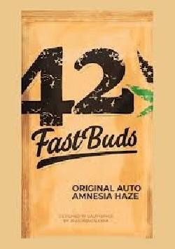 Original Amnesia Haze x1 Fast Buds