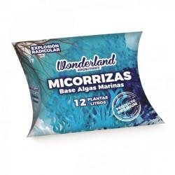 Micorrizas 6G - Wonderland
