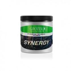 Synergy Micorrizas 40 gr - Grotek