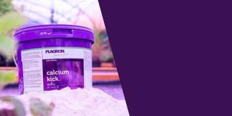 Calcium Kick 5kg - Plagron